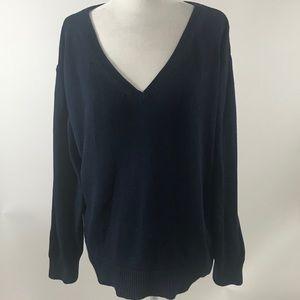 Everlane Blue Cotton V Neck Sweater Sz M